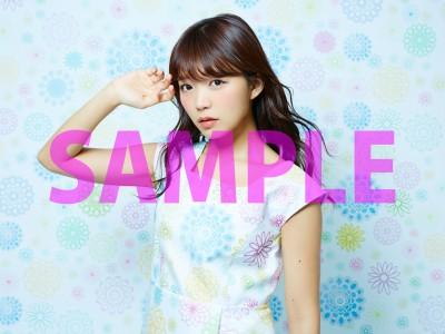 08_ソフマップ_SAMPLE