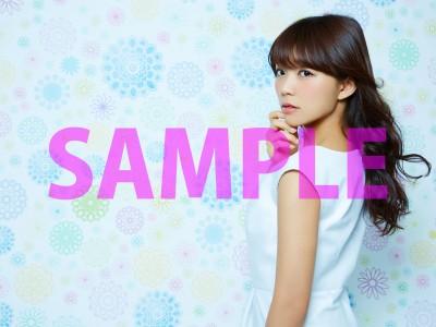 14_新星堂_SAMPLE