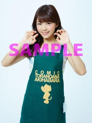 11_とらのあな_SAMPLE